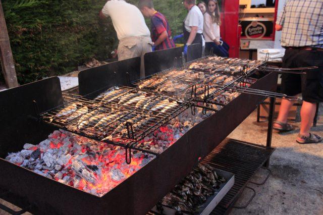 Sardine feast